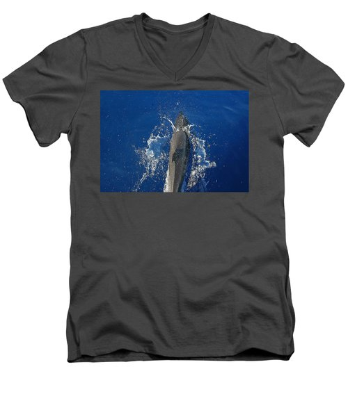 Dolphin Men's V-Neck T-Shirt by J R Seymour