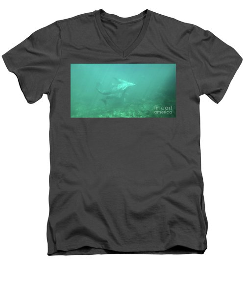 Men's V-Neck T-Shirt featuring the photograph Dolphin Swim by Francesca Mackenney