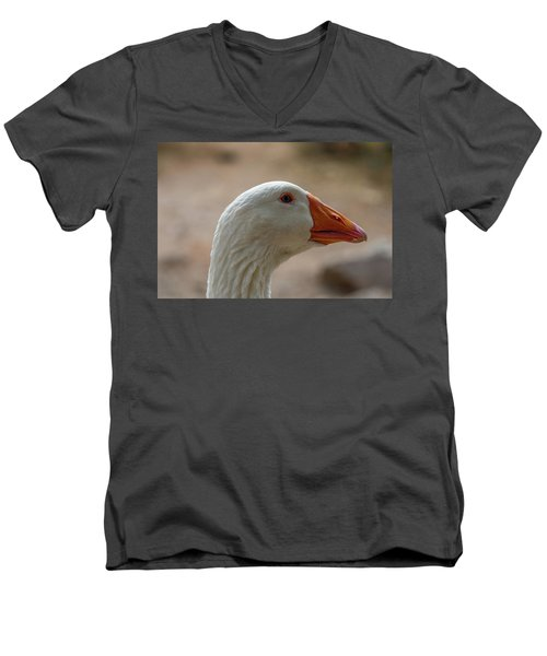 Domestic Goose Men's V-Neck T-Shirt