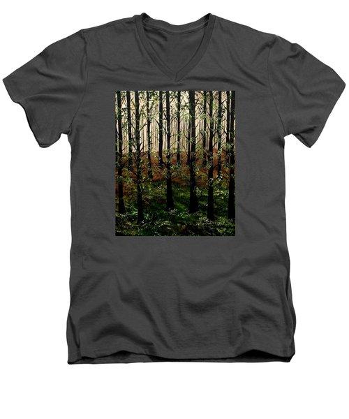 Don't Touch Down Men's V-Neck T-Shirt