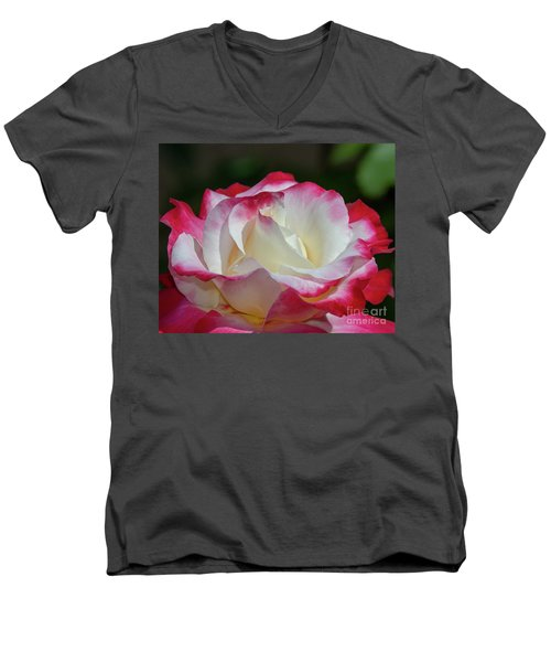 Double Delight Rose 1 Men's V-Neck T-Shirt