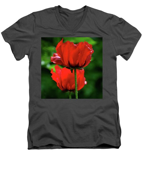 Double Red Poppies Men's V-Neck T-Shirt
