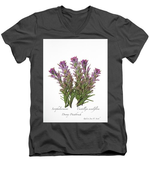 Downy Paintbrush Men's V-Neck T-Shirt