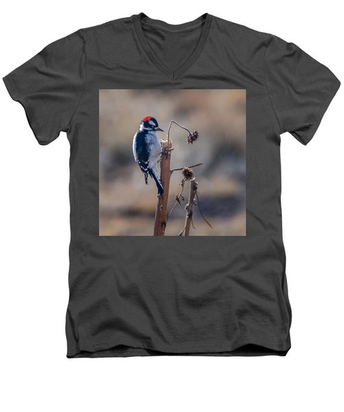 Downy Woodpecker Finding Insects From Sunflower Stem. Men's V-Neck T-Shirt