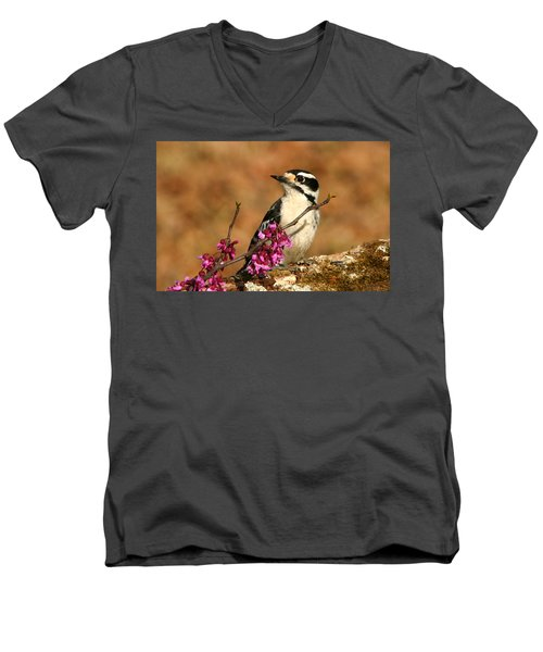 Downy Woodpecker In Spring Men's V-Neck T-Shirt by Sheila Brown