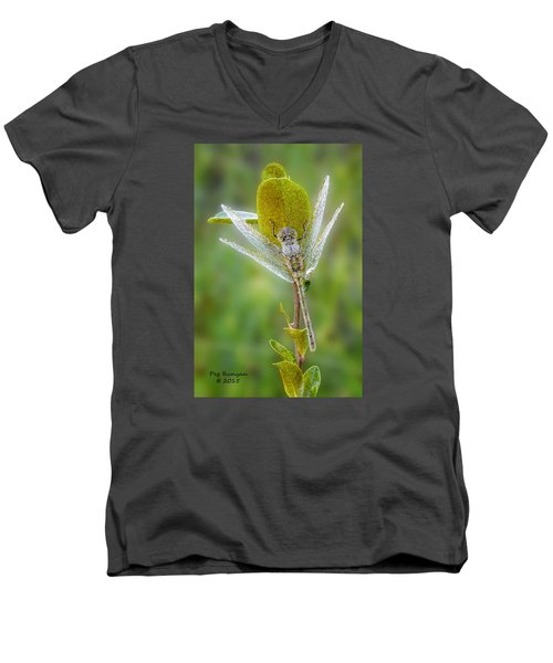 Dragon Fly In The Dew Men's V-Neck T-Shirt
