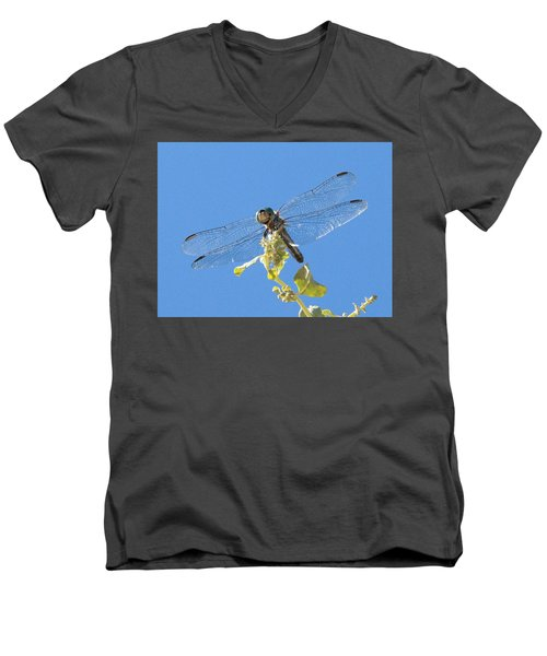 Dragonfly 2 Men's V-Neck T-Shirt