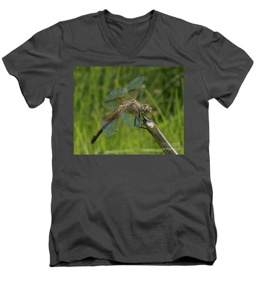Dragonfly 8 Men's V-Neck T-Shirt