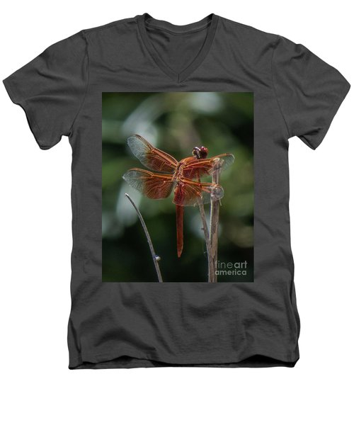 Dragonfly 9 Men's V-Neck T-Shirt