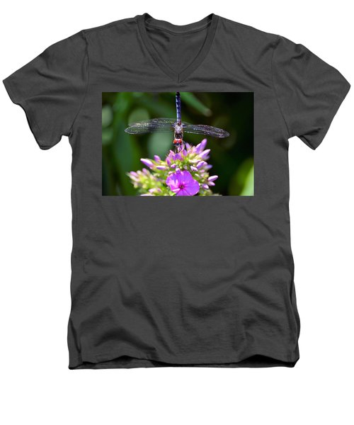 Dragonfly And Phlox Men's V-Neck T-Shirt