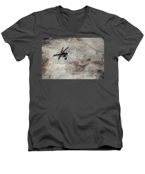 Dragonfly On Solid Ground Men's V-Neck T-Shirt