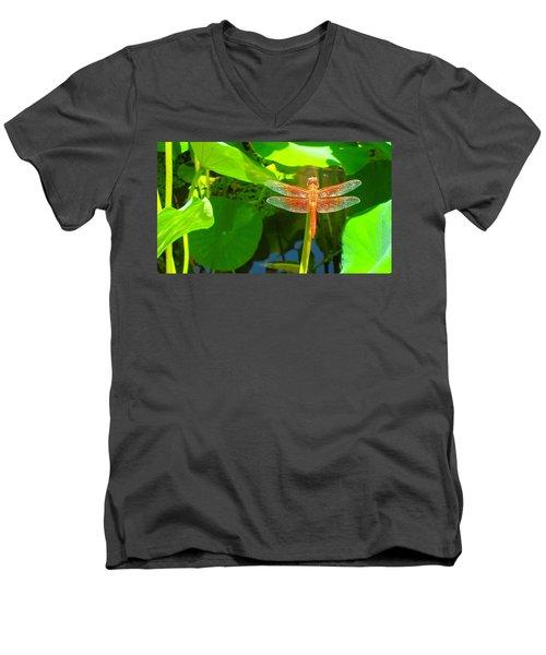 Dragonfly Men's V-Neck T-Shirt by Mark Barclay