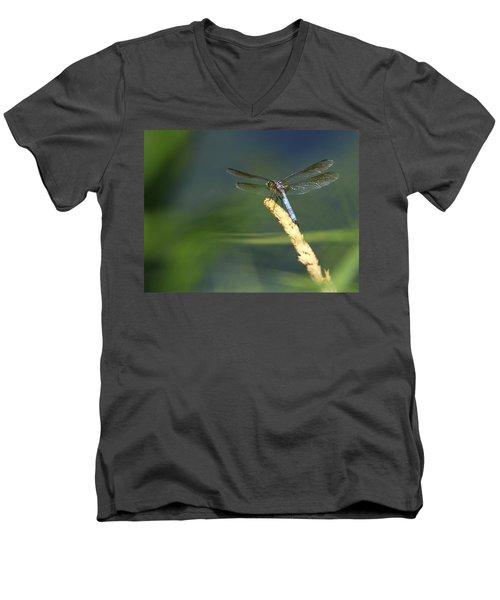 Dragonfly New York Men's V-Neck T-Shirt by Bob Savage