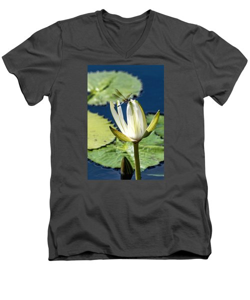 Men's V-Neck T-Shirt featuring the photograph Dragonfly by Susi Stroud
