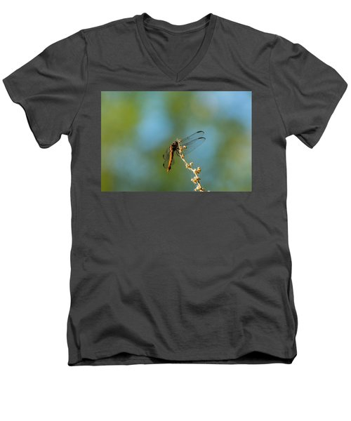 Dragonfly Wings Men's V-Neck T-Shirt