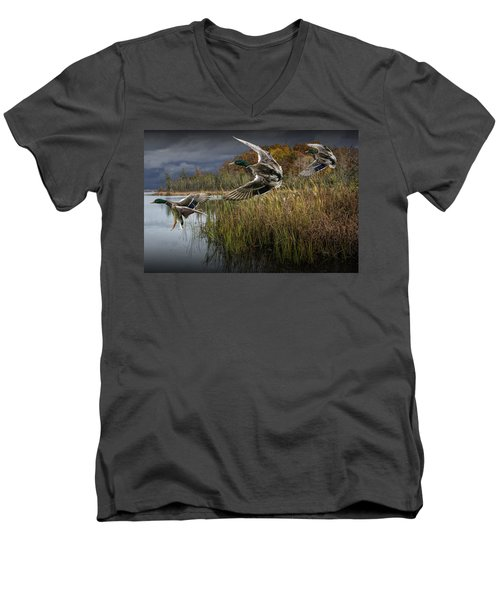 Drake Mallard Ducks Coming In For A Landing Men's V-Neck T-Shirt