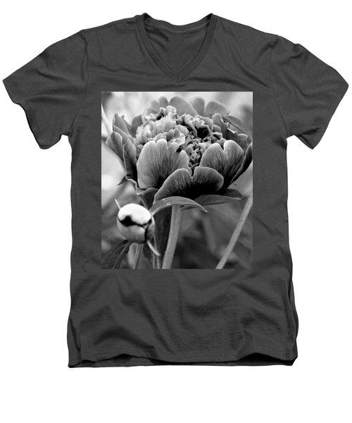 Drama In The Garden Men's V-Neck T-Shirt