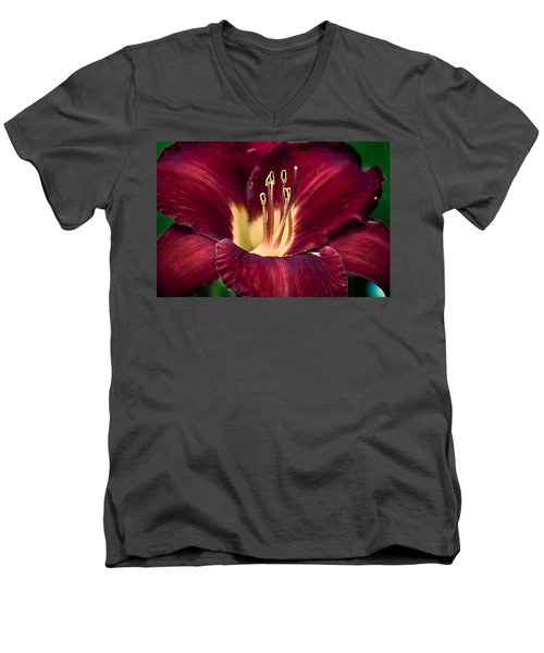 Men's V-Neck T-Shirt featuring the photograph Dramatic Lily by Jason Moynihan