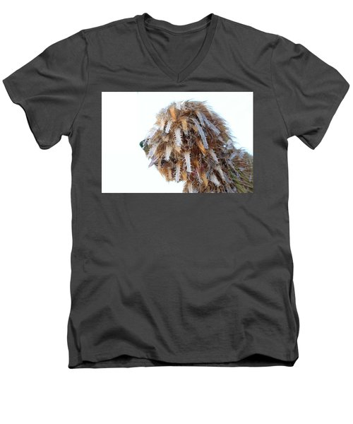 Dreadlocks Men's V-Neck T-Shirt