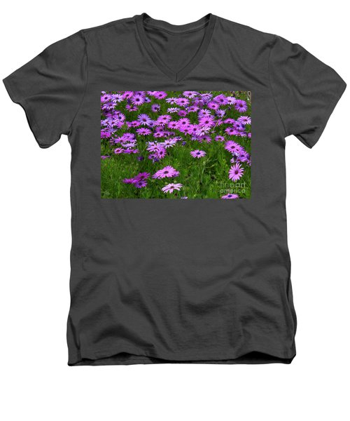 Dreaming Of Purple Daisies  Men's V-Neck T-Shirt