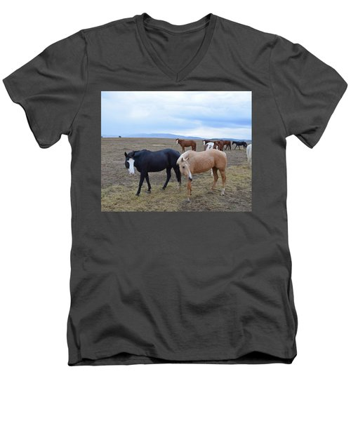 Dreaming Of Wild Horses Men's V-Neck T-Shirt