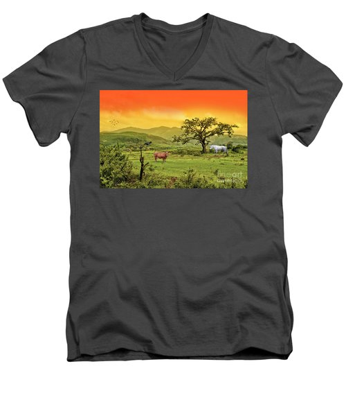 Men's V-Neck T-Shirt featuring the photograph Dreamland by Charuhas Images