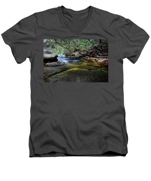 Dreamy Creek Men's V-Neck T-Shirt