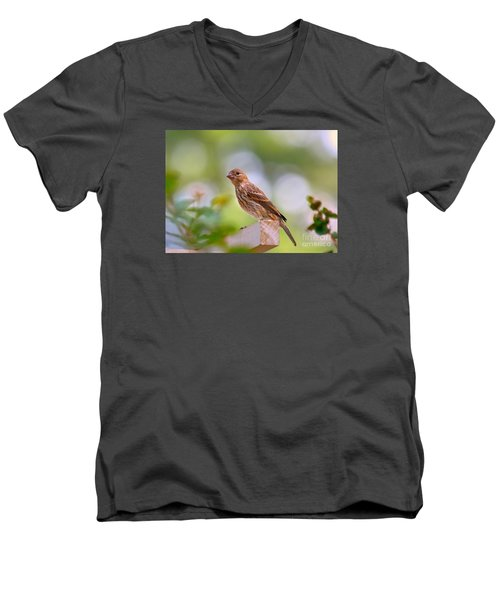 Men's V-Neck T-Shirt featuring the photograph Dreamy Finch by Lisa L Silva
