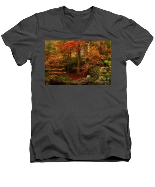 Dreamy Forest Glade In Fall Men's V-Neck T-Shirt