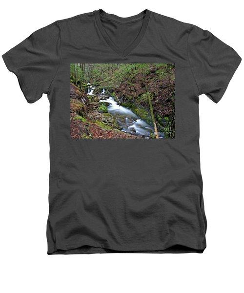 Dreamy Passage Men's V-Neck T-Shirt