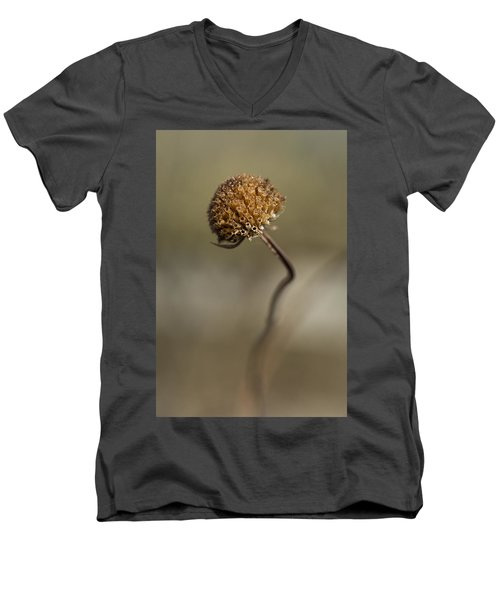 Dried Flower Close-up Men's V-Neck T-Shirt