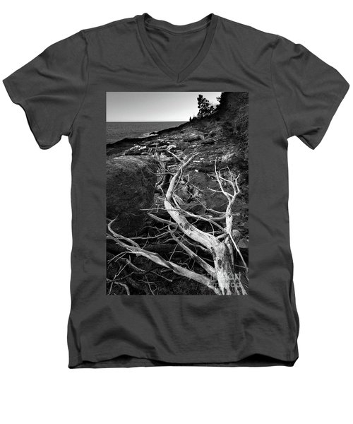 Driftwood Tree, La Verna Preserve, Bristol, Maine  -20999-30003 Men's V-Neck T-Shirt