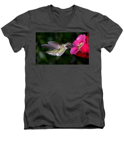 Drink Deep Men's V-Neck T-Shirt