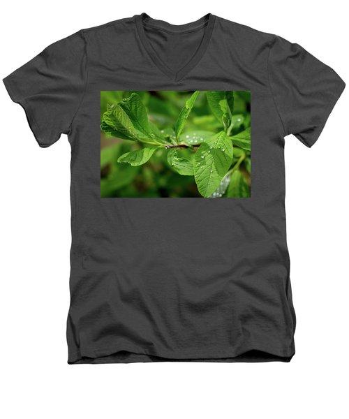 Droplets On Spring Leaves Men's V-Neck T-Shirt