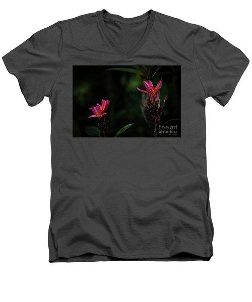 Dual Red Plumerias Men's V-Neck T-Shirt