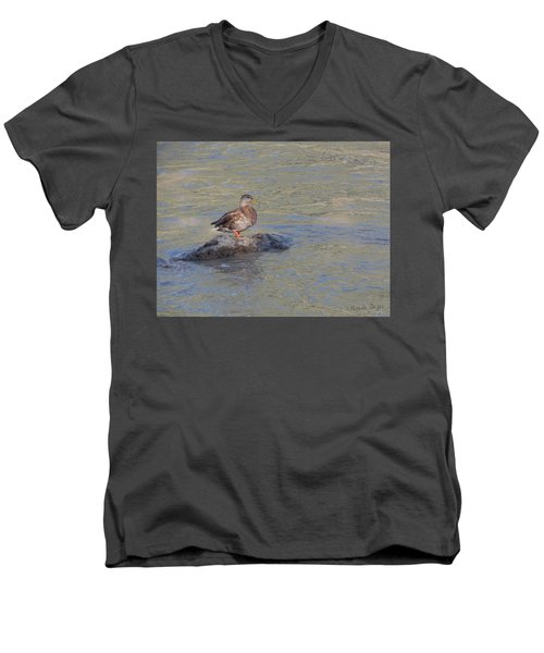 Duck Alone On The Rock Men's V-Neck T-Shirt