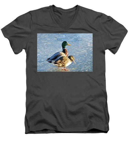 Duck Pair On Frozen Lake Men's V-Neck T-Shirt
