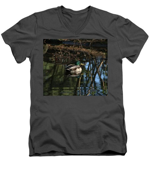 Duck Resting Men's V-Neck T-Shirt by John Rossman