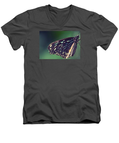 Men's V-Neck T-Shirt featuring the photograph Dulce Alegria by The Art Of Marilyn Ridoutt-Greene