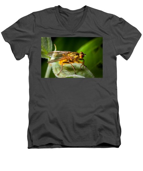 Dung Fly On Leaf Men's V-Neck T-Shirt