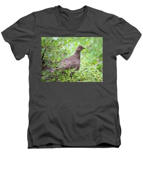 Dusky Grouse Men's V-Neck T-Shirt