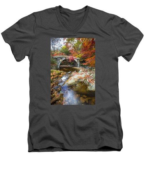 Dying Colours Men's V-Neck T-Shirt