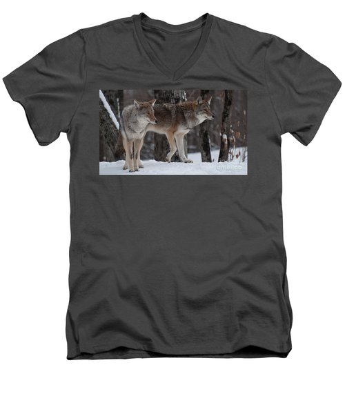 Men's V-Neck T-Shirt featuring the photograph Dynamic Duo by Bianca Nadeau