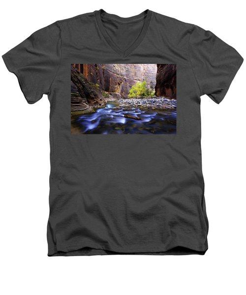 Dynamic Zion Men's V-Neck T-Shirt