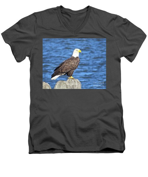 Eagle At East Point  Men's V-Neck T-Shirt by Nancy Patterson