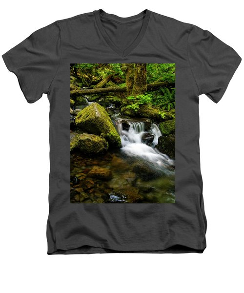 Eagle Creek Cascade Men's V-Neck T-Shirt