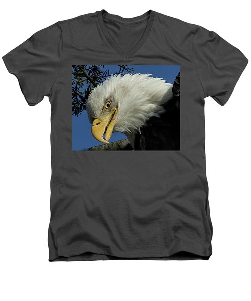 Eagle Head Men's V-Neck T-Shirt