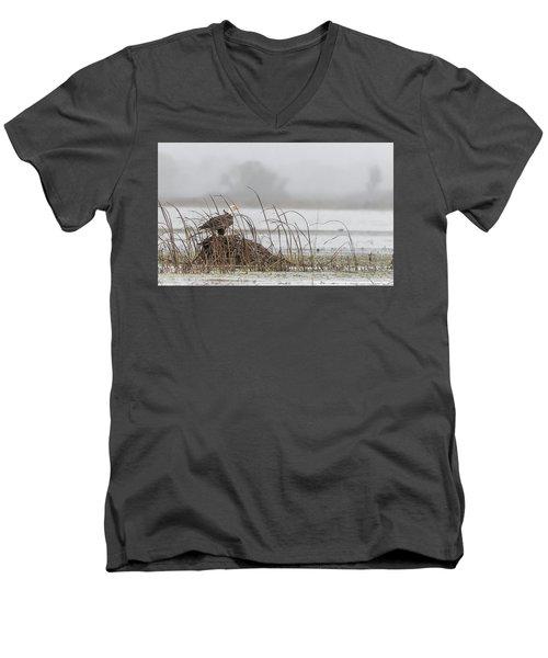 Eagle Hunts For Coots And Ducks Men's V-Neck T-Shirt