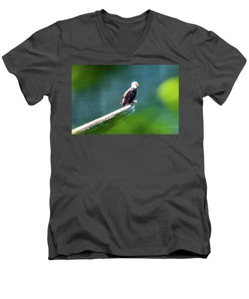 Eagle In Lake Men's V-Neck T-Shirt