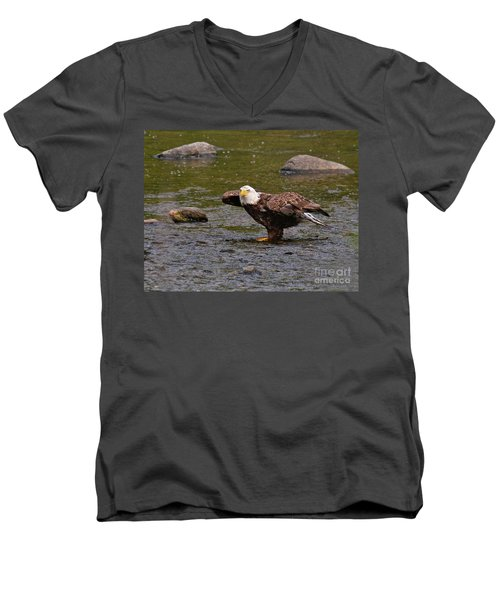 Men's V-Neck T-Shirt featuring the photograph Eagle Prepares For Take-off by Debbie Stahre